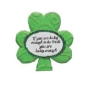 St. Patricks Day Magnet Case Pack 144