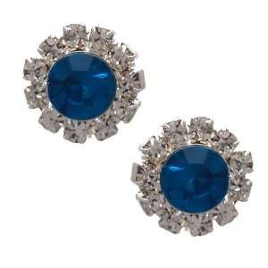 Alita Silver Turquoise Crystal Clip On Earrings Jewelry