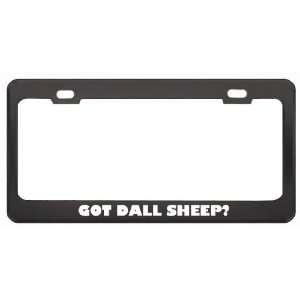 Got Dall Sheep? Animals Pets Black Metal License Plate Frame Holder