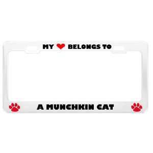 Munchkin Cat Pet White Metal License Plate Frame Tag Holder