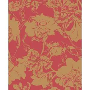 SHAND KYDD Wallpaper  JW105749 Wallpaper: Home & Kitchen