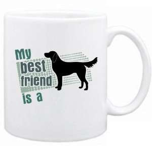 My Best Friend Is A Flat Coated Retriever  Mug Dog Home & Kitchen