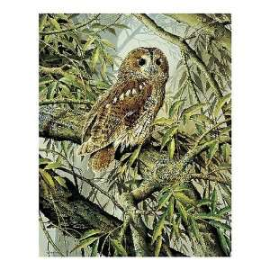 Tawny Owl Jigsaw Puzzle 72pc Toys & Games