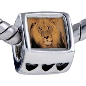 Bead King Jungle Lion Beads Fits Pandora Bracelet Pugster Jewelry