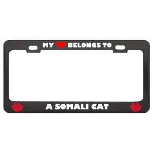 My Heart Belongs To A Somali Cat Animals Pets Metal License Plate