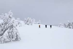 Backpackers snowshoeing through deep snow
