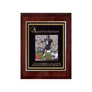 Appreciation (Sports) 10 x 13 Plaque with 8 x 10 Gold