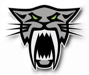 Team Arctic Cat Head Sabercat Firecat decal sticker F8