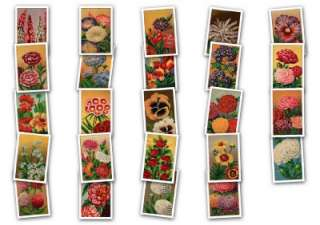 Vintage 20s French Flower seed Label Images ClipArt CD