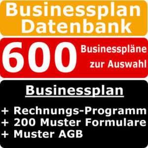 Existenzgründung Businessplan CD/DVD Shop